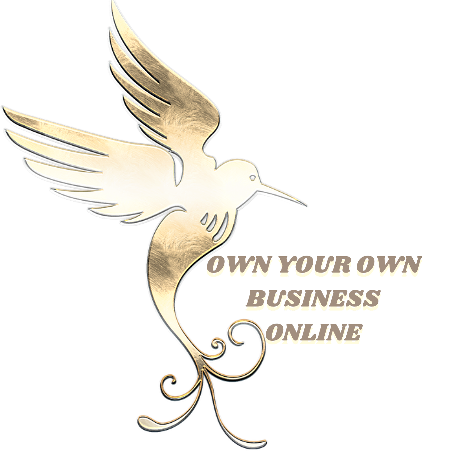 Own Your Own Business Online.